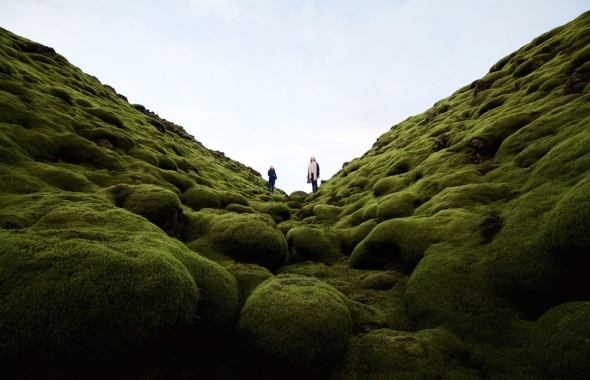 Whilst on a road trip in Iceland, we stumbled across a sea of old lava flows that has, over the centuries, been blanketed in thick, green layer of moss.